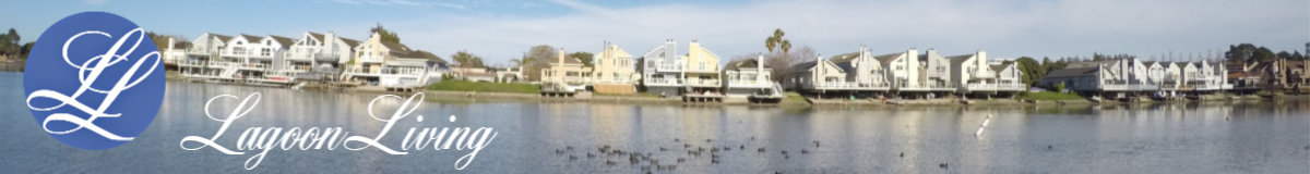 Lagoon Living: Community & Real Estate on the San Mateo Marina Lagoon